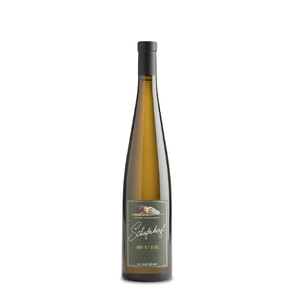 Picture of Chapoutier Riesling, Lieu dit Berg 2015 0,75 L